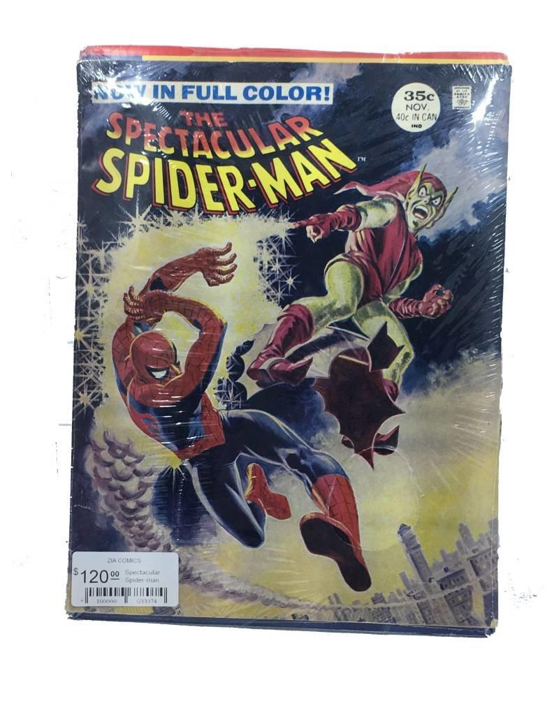 Marvel Comics Spectacular Spider-man Magazine #2 (.35 cover)