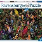 Ravensburger Birds of Art -1000 pc