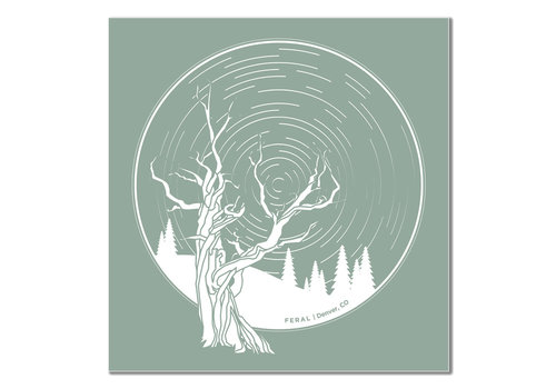 FERAL FERAL Tree and Startrails Teal Sticker