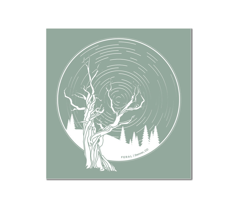 FERAL Tree and Startrails Teal Sticker