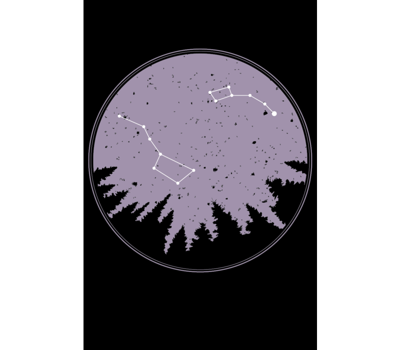 FERAL Constellation Hoodie