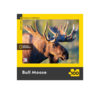 New York Puzzle Company National Geographic Bull Moose 100 Piece Puzzle