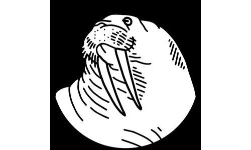 Walrus Oil