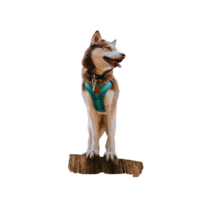 Wilder Dog Harness