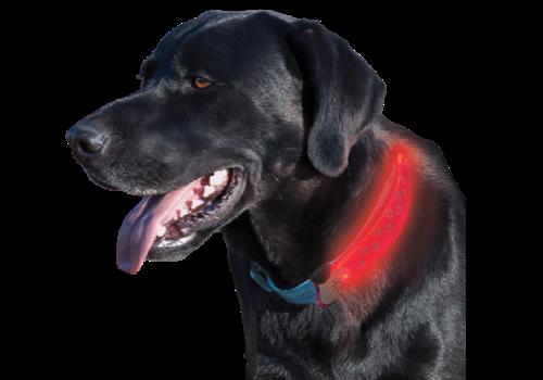 Nite Ize Nite Dawg LED Collar Cover