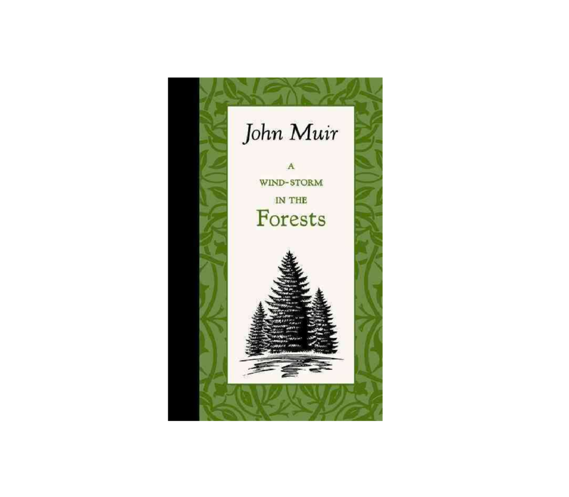 A Wind-Storm In The Forests - John Muir