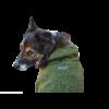 Wilder Dog Wilder Dog Fleece Jacket