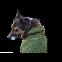 Wilder Dog Fleece Jacket