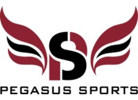PEGASUS SPORTS