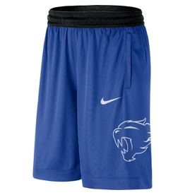 Nike Team Sports SHORT, NIKE, DRI-FIT, NEW LOGO, UK