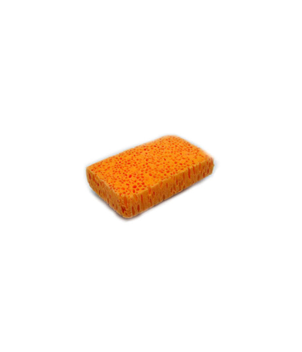 "bioBob biobob ""The Cute One"" Sponge #5"