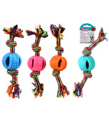 Paws PAWS Spiny Rope Toy
