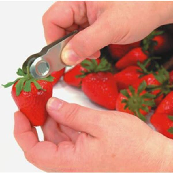Stainless Steel Strawberry Huller by FoxRun