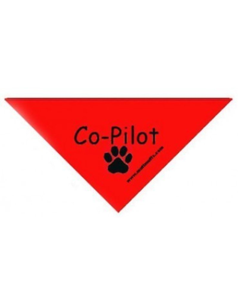 Co-Pilot Triangle Bandana