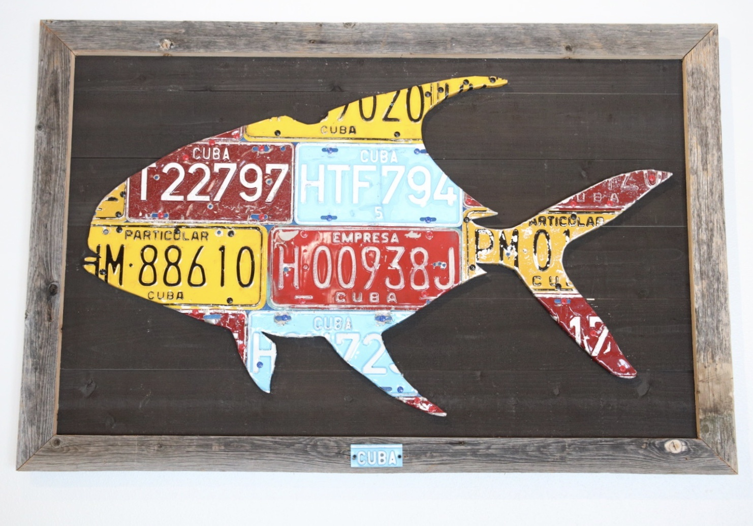 cody's fish Cody's Fish Mounted Cuban Permit
