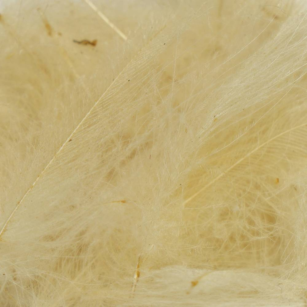 TroutHunter Products TroutHunter Premium Dyed CDC - Cream - Small .5g