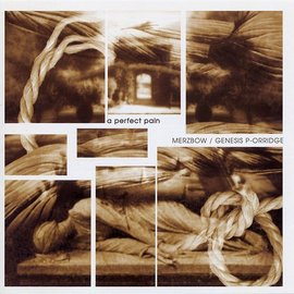 Merzbow/Genesis P-Orridge - A Perfect Pain LP