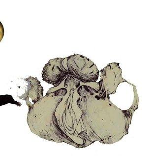 Coil - The Ape Of Naples 2LP