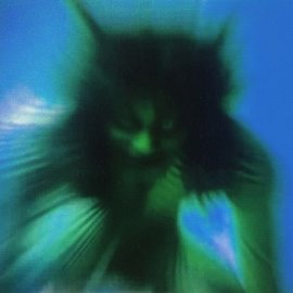 Warp Records Yves Tumor - Safe In The Hands Of Love LP