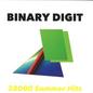 Binary Digit – 38000 Summer Hits LP