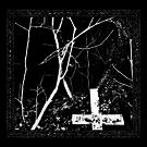 Vrasesinerezve - Demo III LP