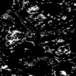 Kranky Grouper - AIA: Dream Loss LP