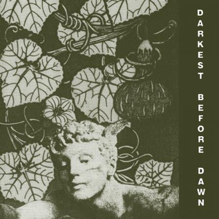 Dark Entries Dark Day - Darkest Before Dawn LP