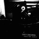 Torn Light Crazy Doberman - — / Haunted, Non / Haunted LP