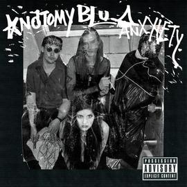 """Anatomy/Blu Anxxiety - Split 12"""""""