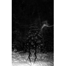 Final Agony Vermisst - Frosty Grimness Essence CS