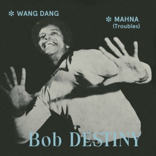 Pharaway Sounds Destiny, Bob - Wang Dang/Mahna 7""
