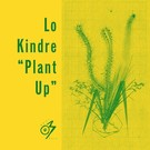 """Lo Kindre - Plant Up 12"""""""