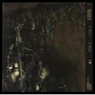 Ascetic House Orgonon Pit - Orgonon Pit LP