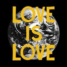 Woodsist Woods - Love Is Love LP