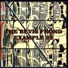Woronzow The Bevis Frond - Example 22 2LP