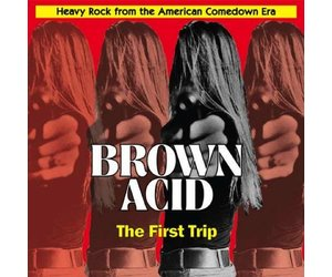 v-a-brown-acid-the-first-trip.jpg