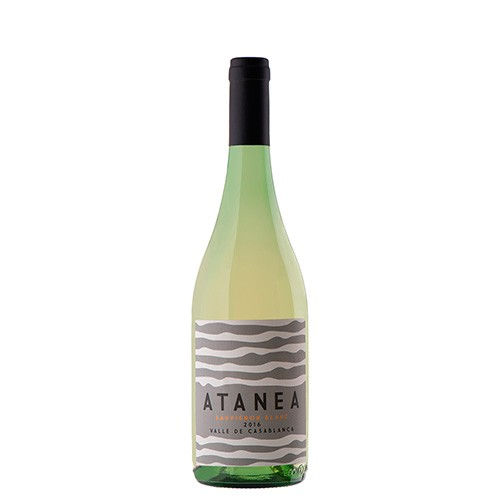 South American Wine Atanea Sauvignon Blanc Valle de Casablanca Chile 2016 750ml