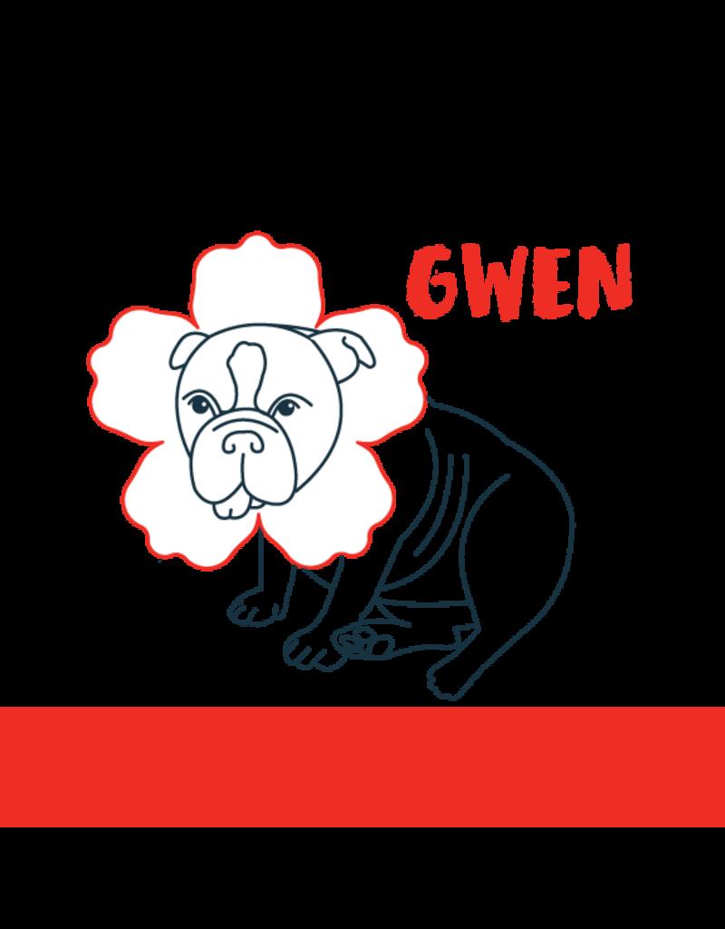 """Bold Dog """"Gwen"""" Hibiscus Lime Kolsch Style Ale 16oz 4pk"""