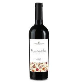 """Italian Wine Gabriele Scaglione """"Passeggiando in Vigne"""" Langhe Nebbiolo 2015 750ml"""