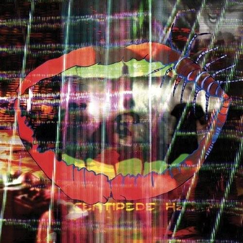 Animal Collective - Centipede HZ 2LP
