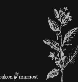 Marnost/Oaken - Split LP