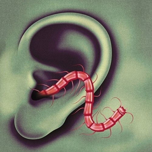 Thee Oh Sees - An Odd Entrances LP