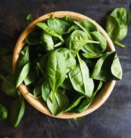Herbalicious Cooking with Fresh Herbs! 8/23/18- Cooking Class