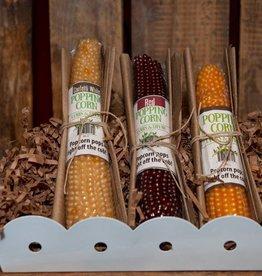 Lambs & Thyme Original Popping Corn Cob