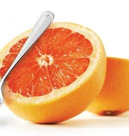 RSVP Grapefruit Spoons