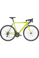 Cannondale Cannondale CAAD Optimo Tiagra 2020