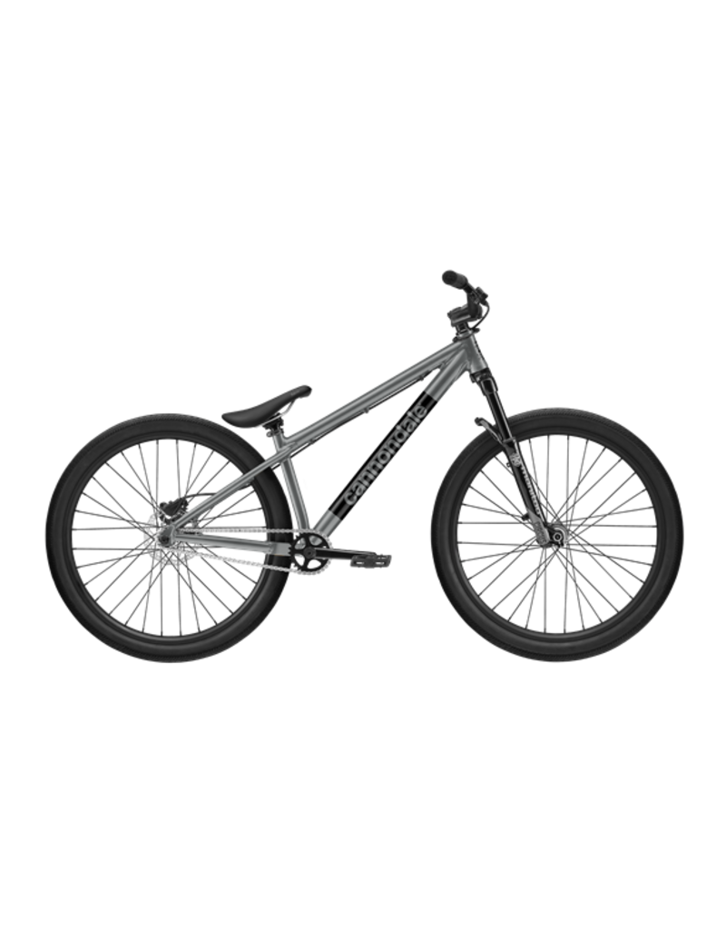Cannondale CANNONDALE DAVE 2021