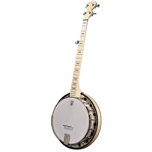 Deering Banjo Co. Deering - Goodtime Special Banjo with Resonator