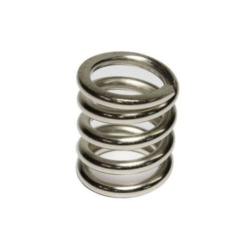 """Allparts Allparts - Bigsby 7/8"""" Stainless Steel Tension Spring"""
