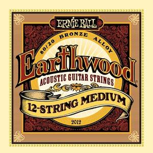 Ernie Ball Ernie Ball - Earthwood 12 String  Medium - 80/20 Bronze